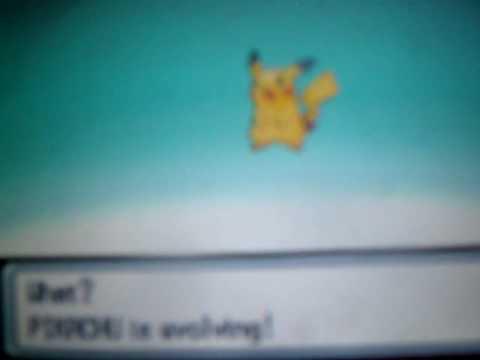 Event shiny Pichu evolves into Pikachu and Raichu