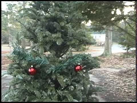 Oh Christmas Tree (Fake Movie Trailer)