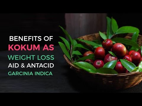 Benefits of Kokum in weight loss & as antacid || Garcinia Indica || indian Lifestyle Guide