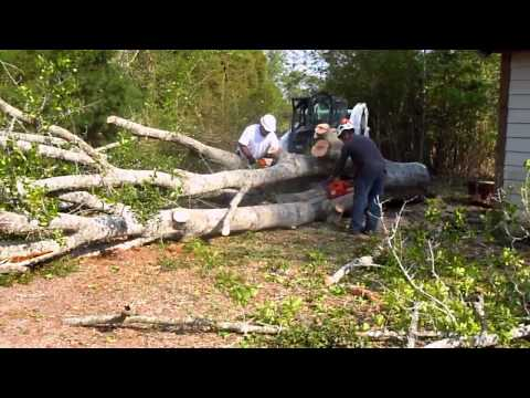 How To Get Out A Chainsaw stuck in tree, Moss Point, MS
