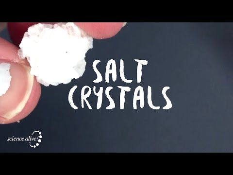Salt Crystals with Science Alive!