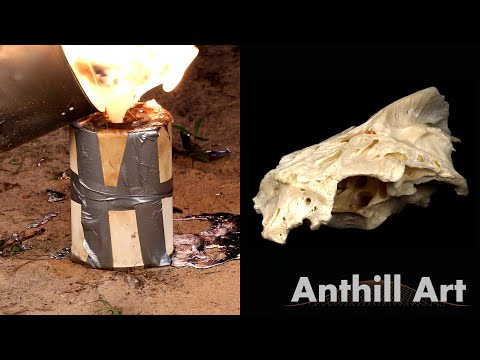 Casting the Inside of a Fish Skull with Molten Aluminum