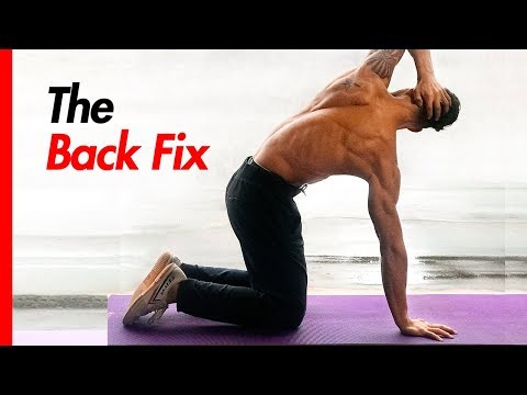 How to FIX Back Pain (RARE Back Pain Exercises)