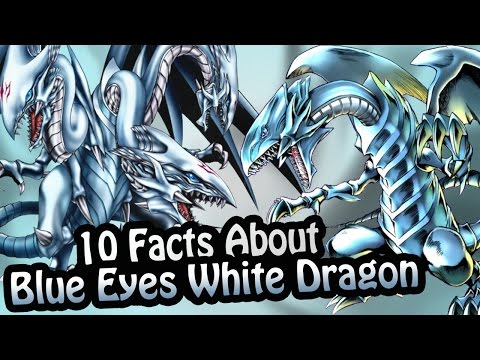 10 Facts About The Blue Eyes White Dragon You Absolutely Must Know!  (Yu-Gi-Oh!)