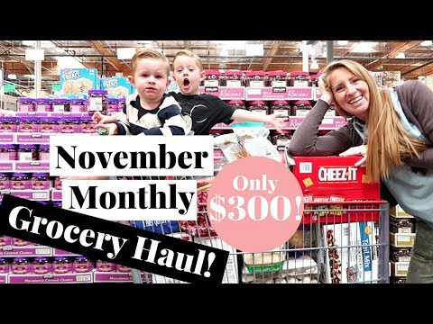 November 2017 MONTHLY Grocery Haul on a Budget | Costco Haul & Target Grocery Haul