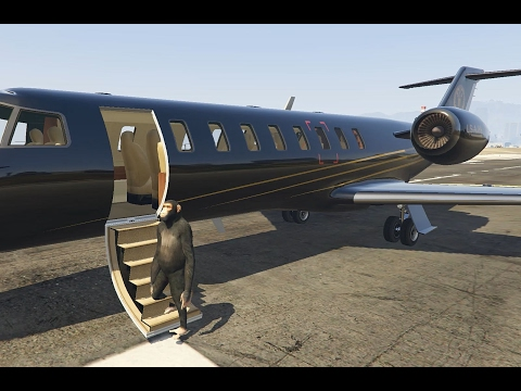 IS IT POSSIBLE? CHIMPANZEE FLYING PRIVATE JET? (GTA V)