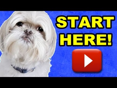 GRYPHON'S COMMERCIAL SERIES - START HERE!!