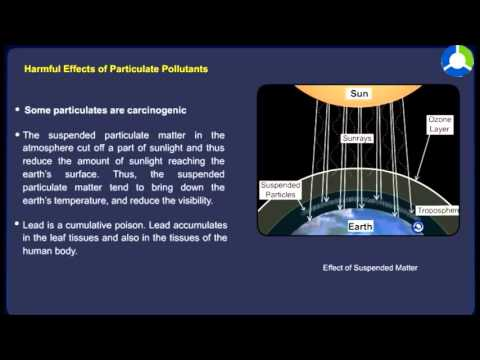 Pollution due to particulates