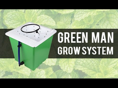 Introducing the Green Man Grow System