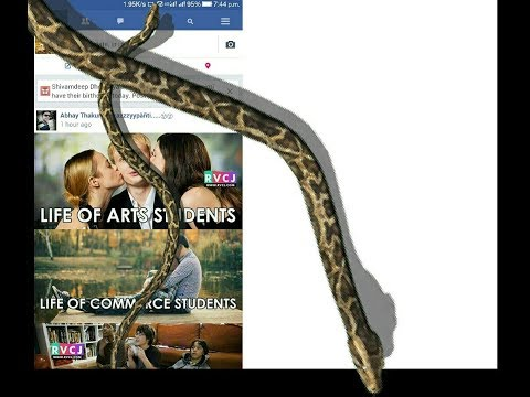 How to add snake on Facebook post 2017