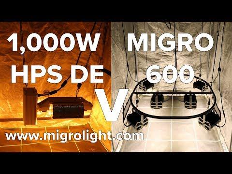 1000W HPS DE (Gavita Pro 400V) Vs MIGRO 600 LED