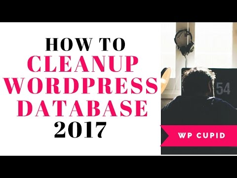 How To Cleanup Your WordPress Database For Improved Performance 2017