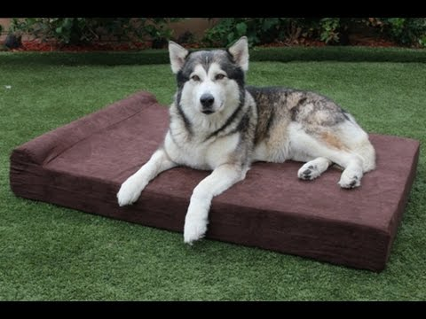 New XXL Extra Large Dog Beds - XXL Orthopedic Memory Foam Pet Bed - 55