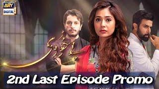 Bay Khudi  - 2nd Last Episode - ( Promo )  - ARY Digital Drama
