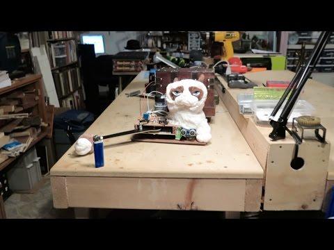 Robot Grumpy Cat
