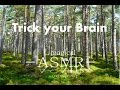 [3D ASMR] Amazing Forest Sounds (Binaural ASMR) - 1 Hour  - Relaxing / Studying