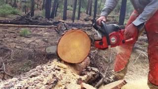 Holzfforma Farmertec G660 chainsaw cutting wood - Vidly xyz