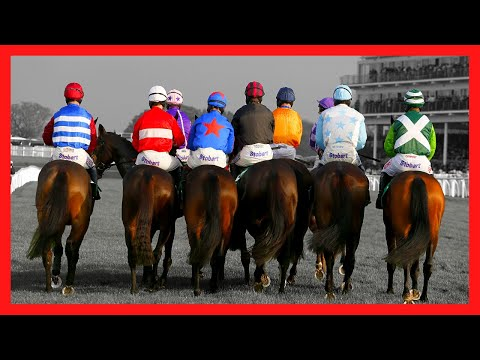 The Biggest Lie In Betting - Don't Place Another Bet Until You've Seen This! Caan Berry