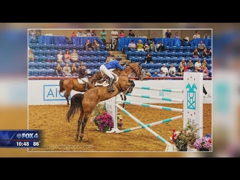 Lone Star Adventures:  Show Jumping