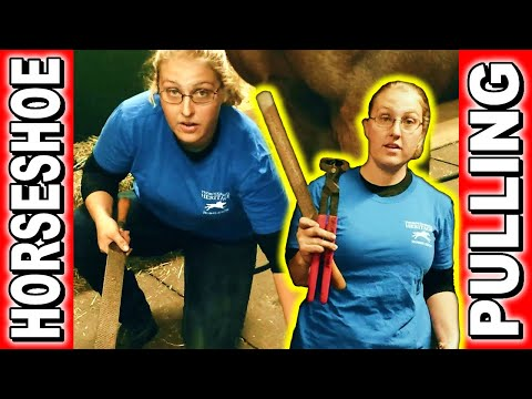 How to Pull Off Horse Shoe. Horseshoe