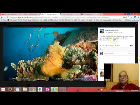 How to Make Your Pictures and Videos GO VIRAL on Facebook