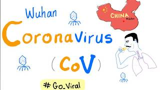 Coronaviruses (Wuhan Virus 🦠 Outbreak 😷)