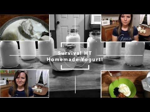 Super Easy Homemade Yogurt (Probiotic Rich)