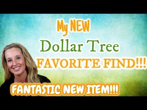 My NEW Dollar Tree FAVORITE FIND!!!! FANTASTIC NEW ITEM