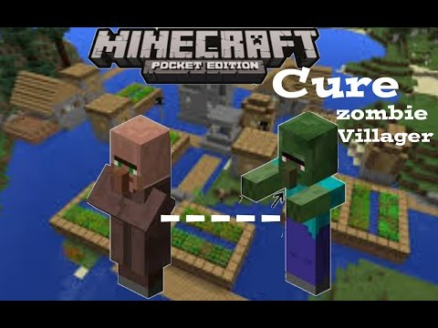 Minecraft PE how to cure a zombie villager!!
