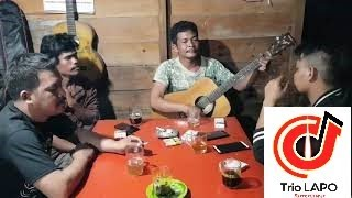 Trio Lapo - Bunga Nabottar