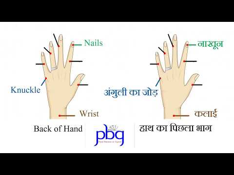 TRICK to remember your FINGERS in English & Hindi by Sandeep Sharma.