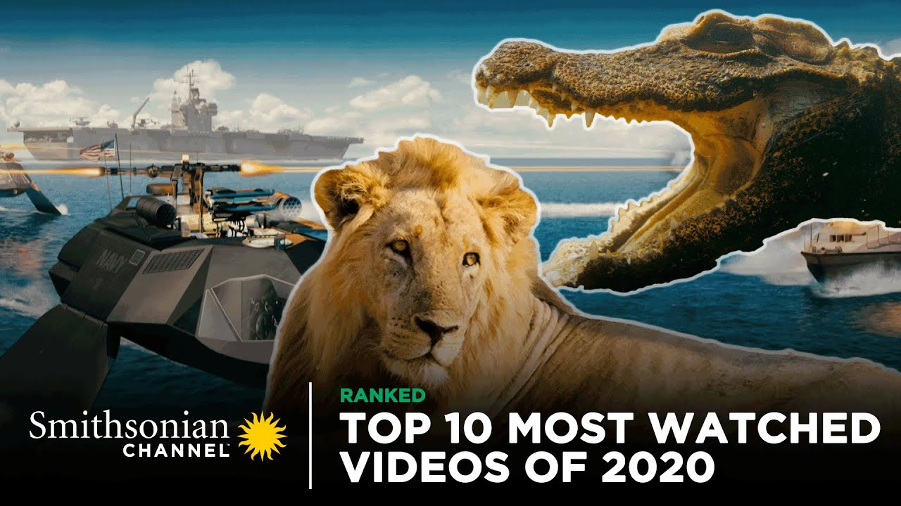 Top 10 Most Watched Videos Of 2020 👀 Smithsonian Channel