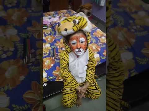 Fancy dress tiger