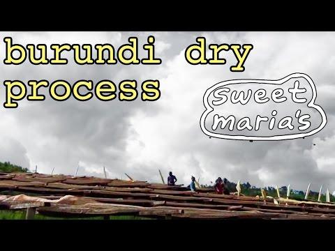 Burundi Dry Process (Natural) Coffee