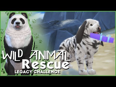 One Lucky Rabbit!! 🌿Sims 4 Wild Animal Rescue Challenge #3