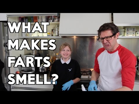 What Makes Farts Smell? With Daisy & Georgie. Gastronaut adventures in food