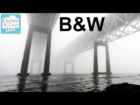 B&W photo Challenge, Insta BOKEH? weird Chit Chat: Tony & Chelsea LIVE!