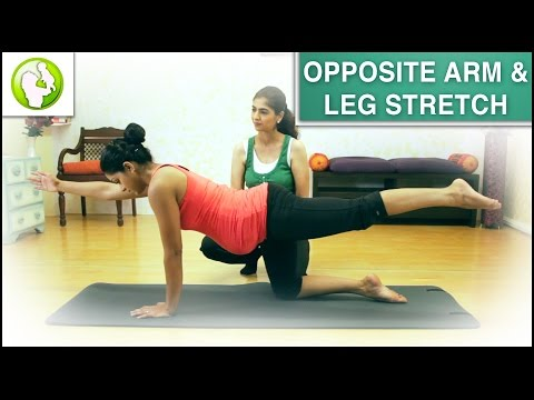 Pregnancy Exercise For Spine