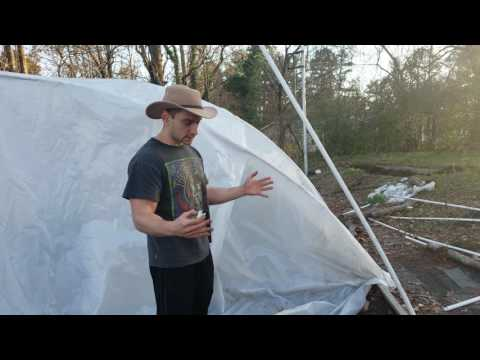 Making a PVC hoophouse attatching the plastic sheet