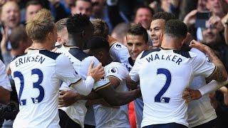 All Tottenham Hotspur Goals in 2016 HD