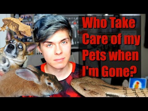 What I Do with My Animals When I'm Away From Home! | Who takes care of them?