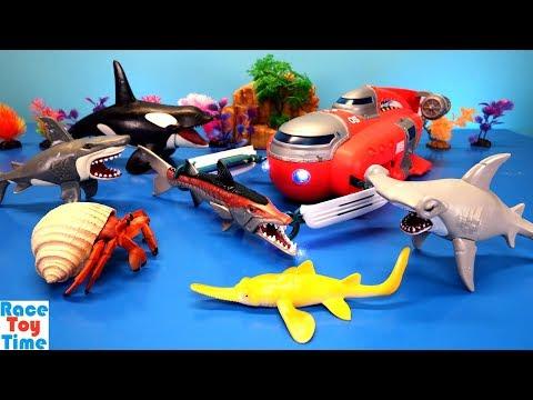 Animal Planet Deep Sea Submarine Playset - Learn Animals Names For Kids