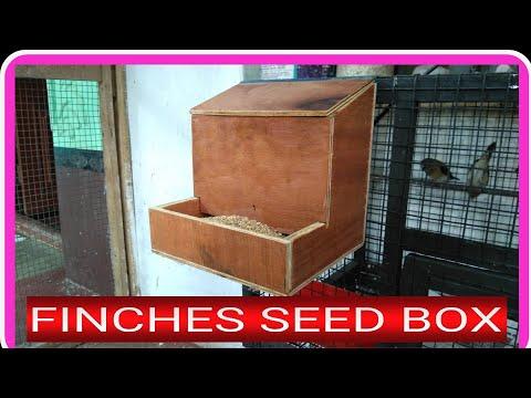 Make a finch seed box