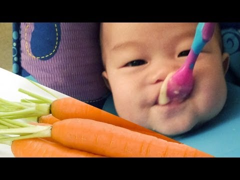 Homemade Carrot Puree - Baby food - Easy and Delicious!