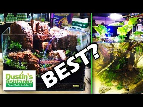 AMAZING Aquariums....Aquascaping CONTEST!