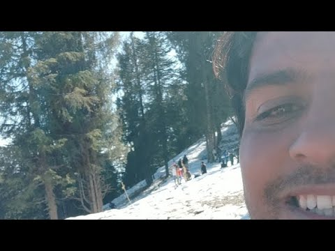 Shimla Ki Sardi Snow Live