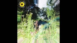 Rex Orange County - Sunflower (Official Audio)
