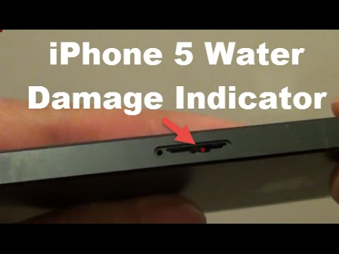 iPhone 5: How to Check For Water Damage Indicator