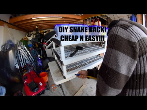 HOW TO BUILD A SNAKE RACK! CHEAP AND EASY!!!