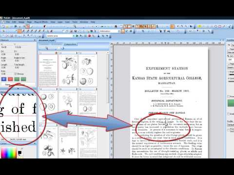 03 Identifying Windows and Tools in PixEdit Document Scanning and Processing Software.